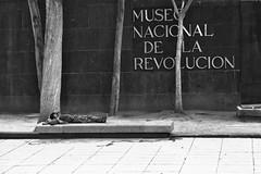 Museo de la revolucion 101 (L Urquiza) Tags: street monumento la revolucion mexico ciudad dita cdmx museo nacional de urban photograpy primer cuadro histrico
