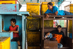 Men in a Box-DSC_8428-2 (thomschphotography3) Tags: indonesia asia southeastasia market men fishmarket colours colourful boxes streetphotography yellow