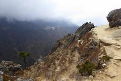 Unterwegs nach Phortse (Alfesto) Tags: nepal trekking wanderung hiking himalaya namche khumbuarea sagarmathanationalpark tengboche phorche phortse pangboche