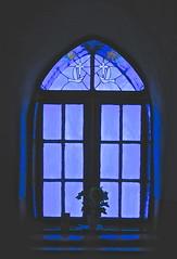 P4300043.jpg (Michael Ferranti Photography) Tags: bridge dog mountain mountains newmexico santafe bird church window cemetery car skull cross desert cattle flag chief prayer jesus pueblo peacock stainedglass hanuman gorge taos virginmary americanindian gothamayurveda michaelferrantiphotography mferrantiphoto