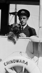 Ship's officer with pet dog on SS CHINDWARA, 1912-1933