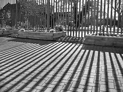 Stripes -EXPLORED - thanks No. 2 on 3rd May 2013. (jimj0will) Tags: fence hff shadows lines bw blackwhite assignment 52182013 billericay shadow bricks pattern explore explored sonycybershot jimj0will jimjowill odt dpi