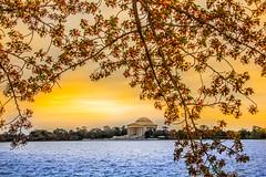 Jefferson Memorial Washington DC 2013