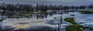 Billingford Flood