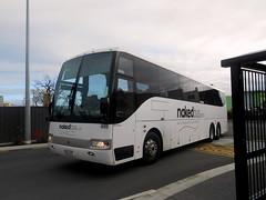 Nakedbus Scania K114, HLZ 147 (miledorcha) Tags: nakedbus new zealand napier north island express inter city service hlz147 scania k114 coach design travel holiday tourist
