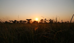 Sunrise II (www.mattprior.co.uk) Tags: adventure adventurer journey explore experience expedition safari africa southafrica botswana zimbabwe zambia overland nature animals lion crocodile zebra buffalo camp sleep elephant giraffe leopard sunrise sunset