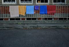towels in school yard (dotintime) Tags: towels linens terry dry wet railing rack drape hang school yard pavement color rainbow dotintime meganlane