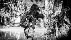 """Interesante ejemplar de Homo Sapiens fotografiando """"Equus ferus"""". Visto en la Plaza de Espaa, Madrid (pepoexpress - A few million thanks!) Tags: nikon nikond600 nikon24120 nikond60024120mmf4 d600 d60024120 pepoexpress people madrid madridstreetcandid madridfunstreet madridplazadeespaaproject fotgrafo bw"""