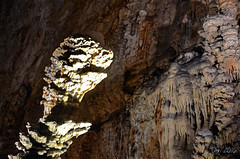 Presenze in grotta (danars) Tags: friuliveneziagiulia grottadelgigante sgronico roccia stalattiti stalagmiti carso