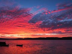 burning sky-8220153 (E.........'s Diary) Tags: eddie rossolympusomdem5markiiscotlandaugust2016newbu rossolympusomdem5markiiscotlandaugust2016newburghfifescotland sunset newburgh boats waterfront river tay