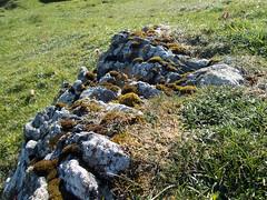 Afternoon walking on Fetlar (Nanooki ) Tags: scottishisles fetlar scotland unitedkingdom gb shetlandislands