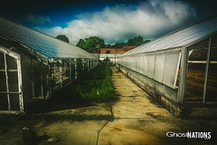 Green House II (Ghost Of Nations Photography And Digital Art) Tags: ghostofnationsphotography ghostofnations laporteindiana laportecounty laporte greenhouse abandon abandoned decay decaying