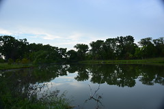 two pools (marensr) Tags: sky blue clouds reflection trees green west ridge nature preserve chicago