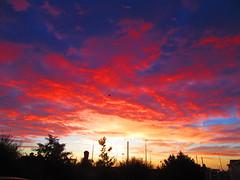 Sunrise 01-09-2016 (gallftree008) Tags: sunrise suburb cloud county codublin clouds cloudsstormssunsetssunrises cloudbase red rainbow sky nature naturesbeauties naturescreations dublin ireland eire autumn