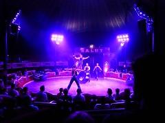El Circo (24) (calafellvalo) Tags: circocircuscirquezirkusclownspayasosemocionesfantasiamagiacalafelvalo raluy circo zirkus sufrir suspirar fantasa fantasy sigh sueos dreams trume rves circoraluy suspense miedo fear trepidation circus cirque equilibrios payasos clowns trapecistas trapze trapez emociones emotionen emotions passions angst sentimirntos feelings feel affect risas lacht lache laughs mirth merriment magia magie magic calafellvalo art