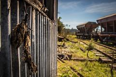 Desierto (ojoartificial) Tags: minas lagarto muerte desierto abandono trenes estacion