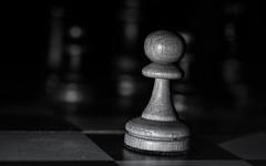 Schritt fr Schritt 256/366 (Skley) Tags: schach taktik schwarz weis bauer figur bauern bauernopfer montag ungewissheit 256 366 2016 foto bild