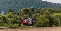 3262_2016_07_16_Haunetal_Neukirchen_SBBC_4482_031_mit_ARS_Autotransportzug_DGS_59881_Bremerhaven_Imsumer_Deich_-_Re (ruhrpott.sprinter) Tags: ruhrpott sprinter deutschland germany nrw ruhrgebiet gelsenkirchen lokomotive locomotives eisenbahn railroad zug train rail reisezug passenger gter cargo freight fret diesel ellok hessen haunetal boxxboxxpress db egp ell hhla hsl hvle lbllocon metrans mrcedispolokdispo bb railpoolrpool rbh rhc schweerbau sbbc txltxlogistik wienerlokalbahnencargo 143 145 152 182 185 193 218 270 428 650 1264 1266 421 es64u2 es64f4 greencargo ice r5 outdoor logo natur sonnenaufgang graffiti rinder