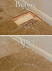 33 Carpet patch pet damage in front kitchen Austin Round Rock Cedar Park Manor Bee Cave San Marcos (Carpet Repair) Tags: austincarpetrepair cedarparkcarpetrepair roundrockcarpetrepair pflugervillecarpetrepair sanmarcoscarpetrepair westlakehillscarpetrepair wimberleycarpetrepair suncitycarpetrepair driftwoodcarpetrepair georgetowncarpetrepair drippingspringscarpetrepair kylecarpetrepair laketraviscarpetrepair lakewaycarpetrepair leandercarpetrepair manorcarpetrepair onioncreekcarpetrepair bartoncreekcarpetrepair budacarpetrepair carpetrepair repaircarpeting carpetrepaircost carpetrepairservice carpetrepaircompanies professionalcarpetrepair carpetdamagerepair carpetrepairspecialist repairingcarpetdamage cancarpetberepaired canyourepaircarpet carpetrepairaustintx fixingcarpet carpetfixing fixcarpet carpetpatching patchingcarpet carpetpatch patchcarpet carpetpatches patchacarpet carpetpatchingcost carpetpatchingservice carpetrepairpatch repaircarpets carpetpatchrepair canyoupatchcarpet repairingcarpetpatch carpet patching patch patchwork repair austin kyle lakeway buda cedarpark roundrock sanmarcos beecave snag tear torn fraying frayed unraveling hole dog cat pet damage petdamage carpetpetdamage carpetrepairpetdamageaustin