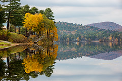 Reflecting (bprice0715) Tags: canon canoneos5dmarkiii canon5dmarkiii landscape landscapephotography nature naturephotography beautiful beauty beautyinnature adirondacks adirondackmountains adirondackpark lakealgonquin reflections autumn fall foliage fallfoliage colorful colors yellow green peaceful symmetry