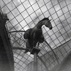 (Delay Tactics) Tags: leeds trinity shopping centre equus sculpture andy scott galvanized mild steel grid horse glass ceiling sky film square black white bw blackandwhite