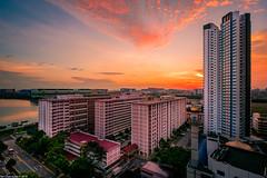 Sunset @ Teban Garden (Chye Guan, Tan) Tags: fujifilm fujifilmxpro2 fujifilmxf1024mm hdb hdbscape singapore singaporescape sunset tebangarden urbanscape landscape