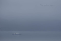 One of those days... (ohagerup) Tags: ferry fjords rain clouds fog weather coast grey