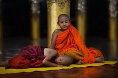 _MG_6570-le-18_04_2016-wat-thail-wattanaram-maesot-thailande-christophe-cochez (christophe cochez) Tags: burmes burma birmanie birman myanmar thailand thailande maesot myawadyy monk bonze novice religion watthailwattanaram travel voyage bouddhisme buddhism portrait