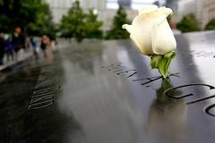 9/11 Memorial (dangaken) Tags: fall2016 2016 worldtradecenter wtc oneworldtradecenter freedomtower lowermanhattan manhattan nyc newyorkcity groundzero 911 september11 memorial 911memorial
