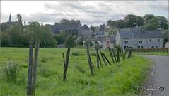 Olne (hanquet jeanluc) Tags: 2013 olne piquet cloture queuedubois lige belgique