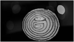 Dual Core! (  ) Tags: bokeh bokehlicious experimentalbokeh onion dualcore core horizontal monochrome bw blackwhite blackandwhite experimental manual manualexposure nikond7000 85mmmicro micro closeup closeups gauravkavathekar wwweyepicsnet myeyepics batonrouge louisiana usa india