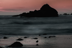 Bird at Pfeiffer Beach (adamkmyers) Tags: sunset bigsur pfeifferbeach
