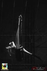 Encuentro de escuelas Europeas de Circo (PeRRo_RoJo) Tags: mujer acrbata a77ii circo retrato sony chica luces noche 77ii acrobacia acrobat alpha bw circofestival circus girl ilca77m2 lights night portrait slt sonya77ii woman carampa escuela thepartymustgoon