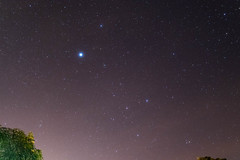 Canis Major the Great Dog (azyaetoile) Tags: constellation sirius nikon nikonmalaysia 35mm