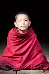 Bhutanese Monk (whitworth images) Tags: asian portrait scarlet devout buddhist himalaya person himalayas young ringpongdzong bhutan boy red religion religious man monk spiritual robe travel monastery parodzong dzong male crimson maroon asia fabric bhutanese paro parodzongkhag