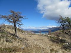 """Torres del Paine: trek du W. Jour 5: retour à Paine Grande. The end ! <a style=""""margin-left:10px; font-size:0.8em;"""" href=""""http://www.flickr.com/photos/127723101@N04/30231542126/"""" target=""""_blank"""">@flickr</a>"""