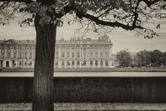 Recognizable view -   (Valery Parshin) Tags: vasilyevskyisland russia saintpetersburg stpetersburg neva river palace tree square ingermanland sepia blackandwhite valeryparshin