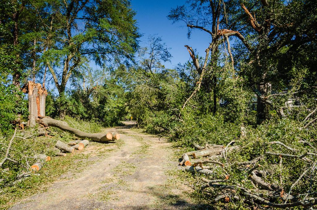 Hurricane Matthew - Florence SC -10.jpg