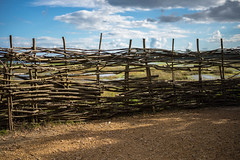 Fence of Nature (Sean McCammon) Tags: fence poole harbour nature natural upton park