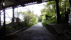 Newhaven station  (Edinburgh - Leith old railway (Caledonian route)) (dave_attrill) Tags: edinburgh haymarket leith caledonian railway disused trackbed granton carstairs lms cycle route path bridleway footpath remains newhaven station platforms