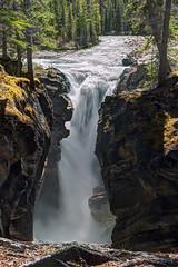 Siffleur Falls (John Payzant) Tags: siffleur falls alberta hdr canada