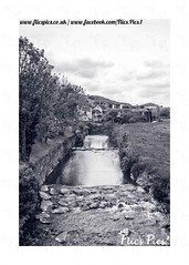 River Coly (flicspics) Tags: colyton colyford devon england southwest greatbritain gb britain british uk river countryside countryscene countrylife rurallife rural country outside outdoor blackandwhitephotography blackandwhite blackandwhitephoto monochrome mono english englishlandscape englishcountryside scenic calm peaceful tranquil village water rocks trees