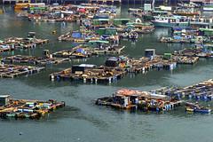 Sok Kwu Wan Fischzucht / fish farms (waldo.posth) Tags: fish minolta farm sony 14 apo hong kong tc af wan f28 hs lamma sok 200mm kwu fischzucht slta99v