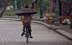 Bicylist with an Umbrella at The Ancient Capital of Hoa Lu, Ninh Bin Province - Vietnam (ChrisGoldNY) Tags: travel poster asian ancient asia southeastasia vietnamese forsale capital bikes vietnam bicycles viet viajes frombehind posters albumcover bookcover umbrellas bookcovers lu hoa binh albumcovers hoalu vn gridskipper ninh ninhbinh ancientcapital jaunted ninhbinhprovince chrisgoldny chrisgoldberg chrisgold chrisgoldphoto chrisgoldphotos