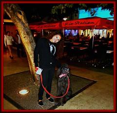 Let's go to Rio! (Midnight and me) Tags: tree rio restaurant streetscene southbeach beautifulgirl lincolnroad standardpoodle peterallen blackstandardpoodle midnightandme riostation igotorio