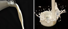 Diptych with another member - 20/52 (Sussetuss77) Tags: white milk diptych splash pouring 2052 52in2013