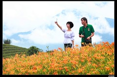 nEO_IMG_IMG_0718 (c0466art) Tags: trip travel flowers blue light red summer sky white mountain color beautiful yellow clouds canon landscape amazing scenery view many hill taiwan visit tourist east 5d 2012  c0466art