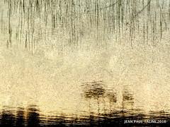 Reflets au couchant (JEAN PAUL TALIMI) Tags: texture beach automne vent eau solitude lac extrieur reflets lignes lumieres ombres landes sudouest aquitaine exterieur biscarrosse talimi