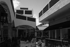IMG_5918 (zumponer) Tags: canon5dmarkii canon dslr fullframe 50mm f8 summer florida palmbeach worthave sun contrast blackwhite