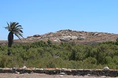 P1280542 (Cinzia, aka microtip) Tags: delos cicladi grecia archeology antichit archaelogy island unescoworldheritagesite mithology sanctuary ancientgreece